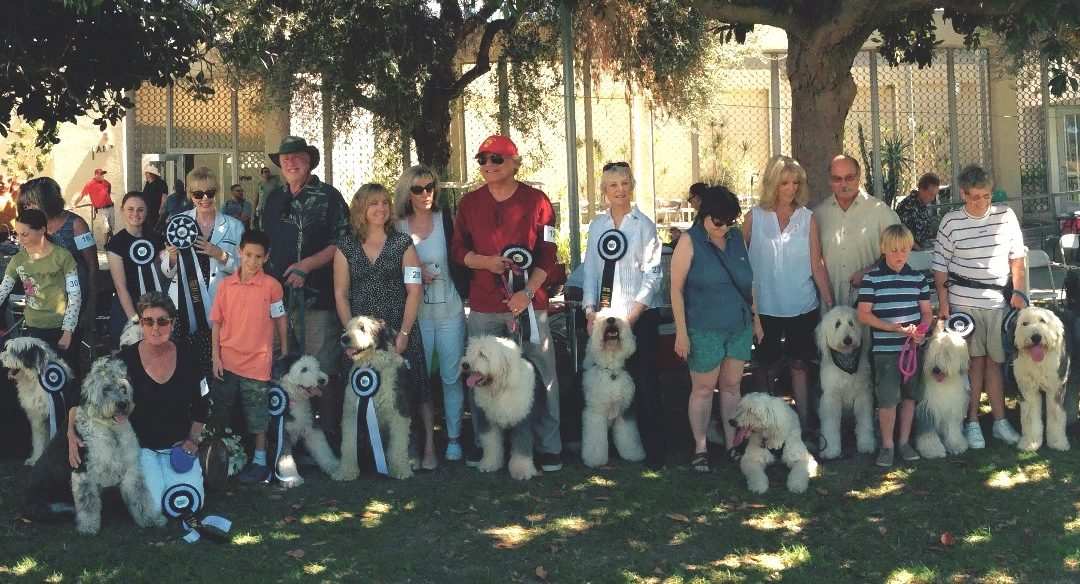 2015: 22nd Annual OES Rescue Parade at Burbank Kennel Club