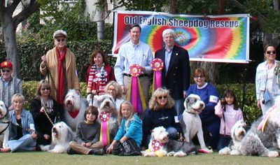 2017: 24th Annual Old English Sheepdog Rescue Parade – A Love Fest in Beverly Hills