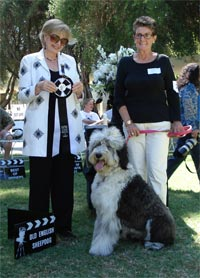 2007: 14th Parade Burbank Kennel Club