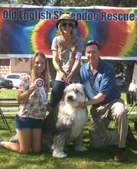 2015: OES style at Woofstock Parade, Beverly Hills
