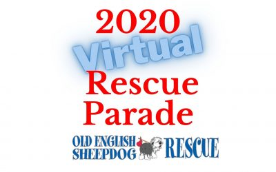2020: Virtual Rescue Parade